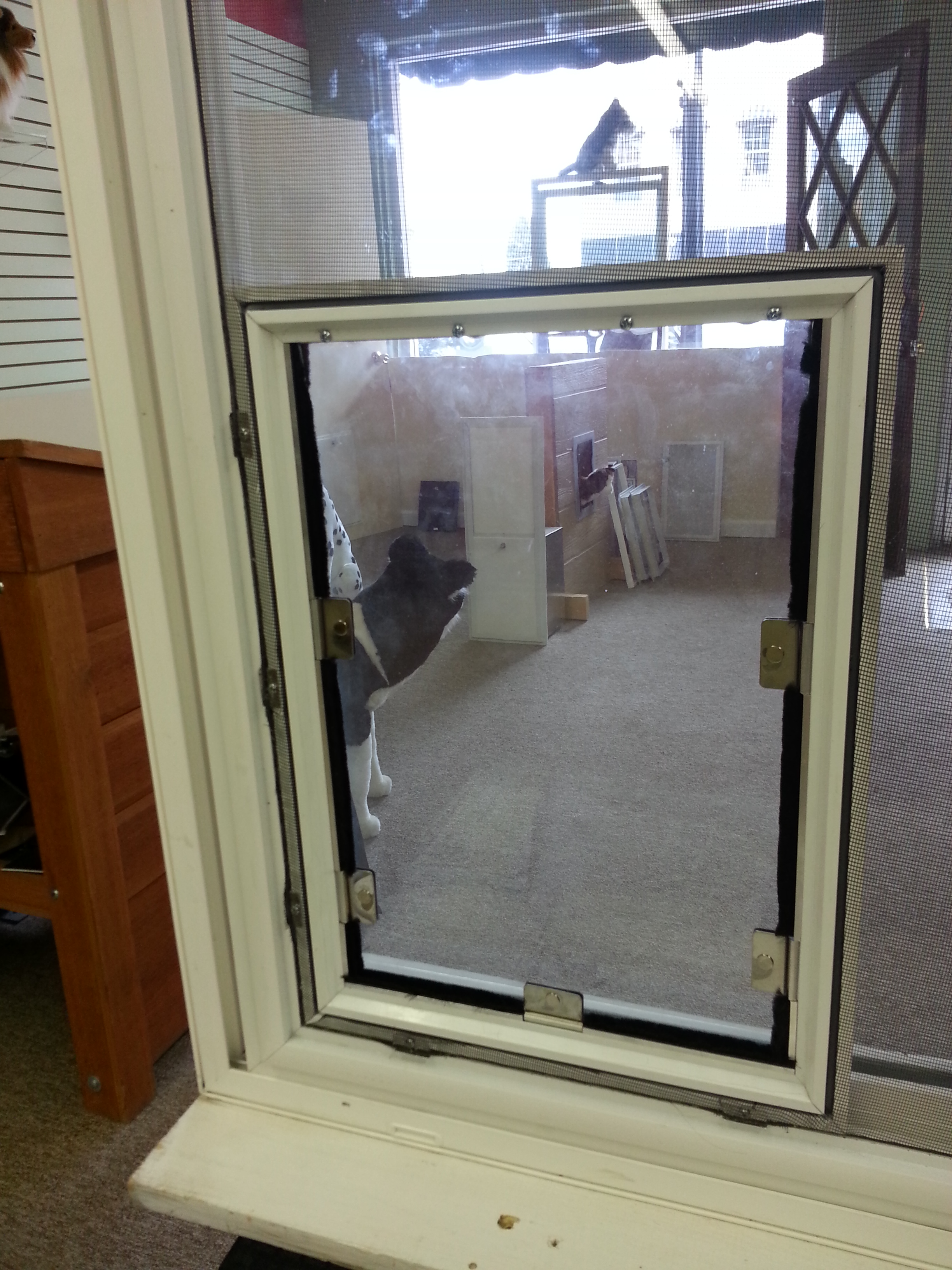 Screen Cat Doors Hale Pet Door Dealer News